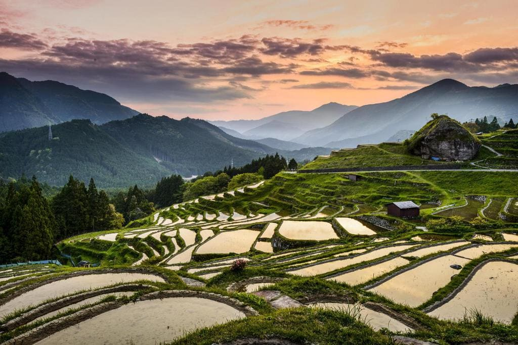 Japan's Pilgrim Trail