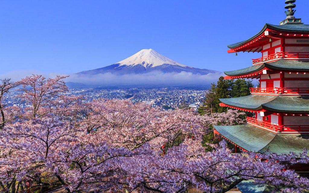 Cherry blossom in Japan, Mount Fuji in the back