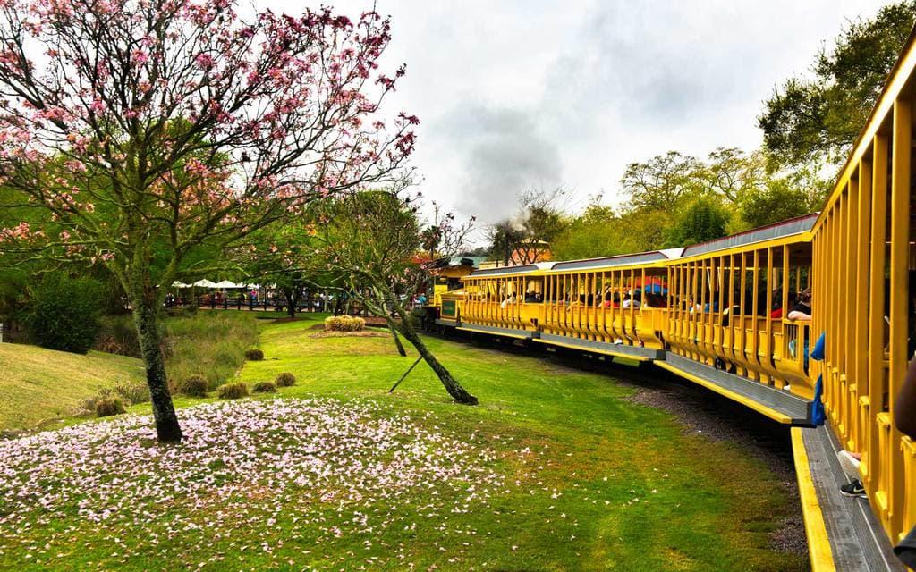 Serengeti Express - a park heritage railroad attraction going through Busch Gardens