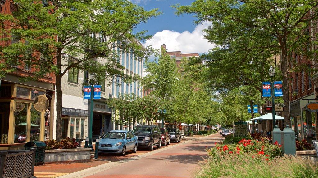 Street view of Kalamazoo, Michigan