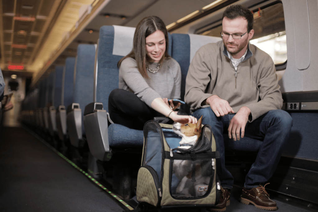 Passengers traveling with their dog on a train